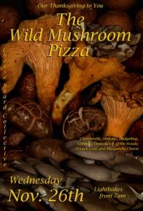 Mushrooms 2014 web