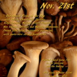 Wild Mushroom 2018 web (1)