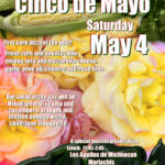 cinco de mayo event